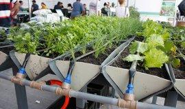 Prefeitura levará produtores para Feira em Holambra